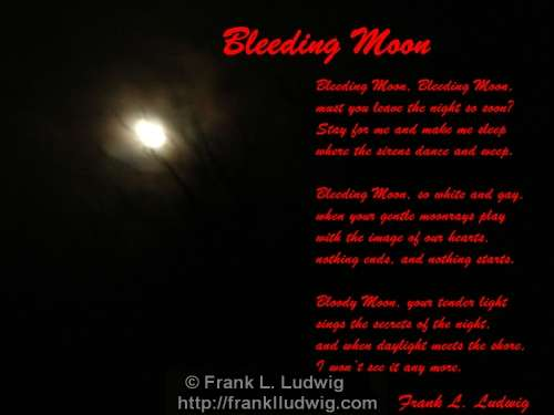 1 - Bleeding Moon