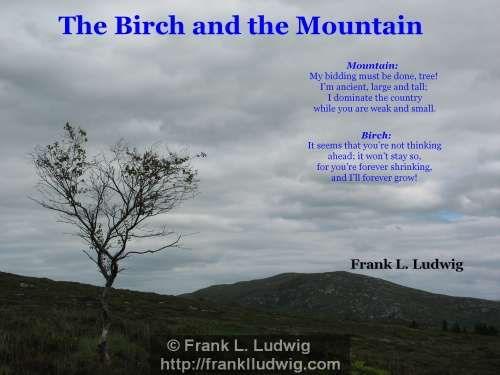 1 - The Birch and the Mountain