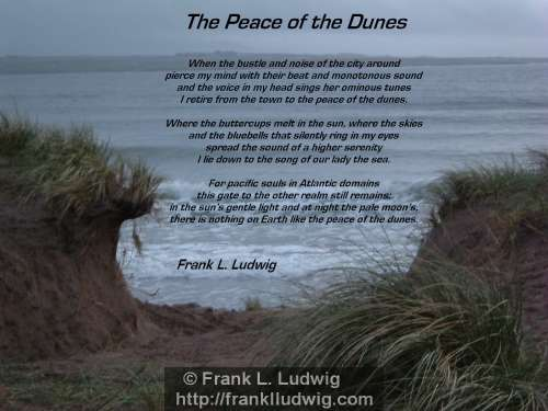 1 - The Peace of the Dunes