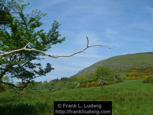 Around Knocknarea