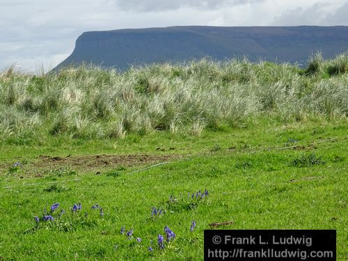 Benbulben from Coney Island