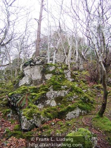 Dooney Rock, Lough Gill, County Sligo