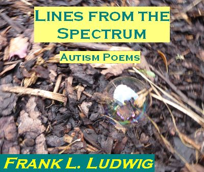 Lines from the Spectrum - Autism Poems