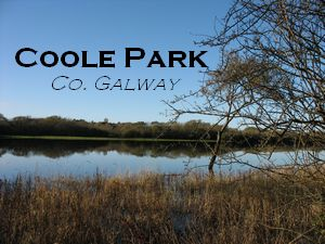 Coole Park, Co. Galway