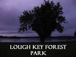 Lough Key Forest Park, Fairy Bridge