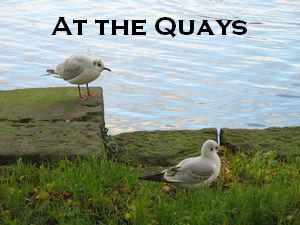 The Quays