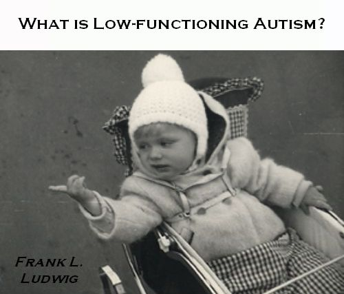 What is Low-Functioning Autism? (© Frank L  Ludwig)
