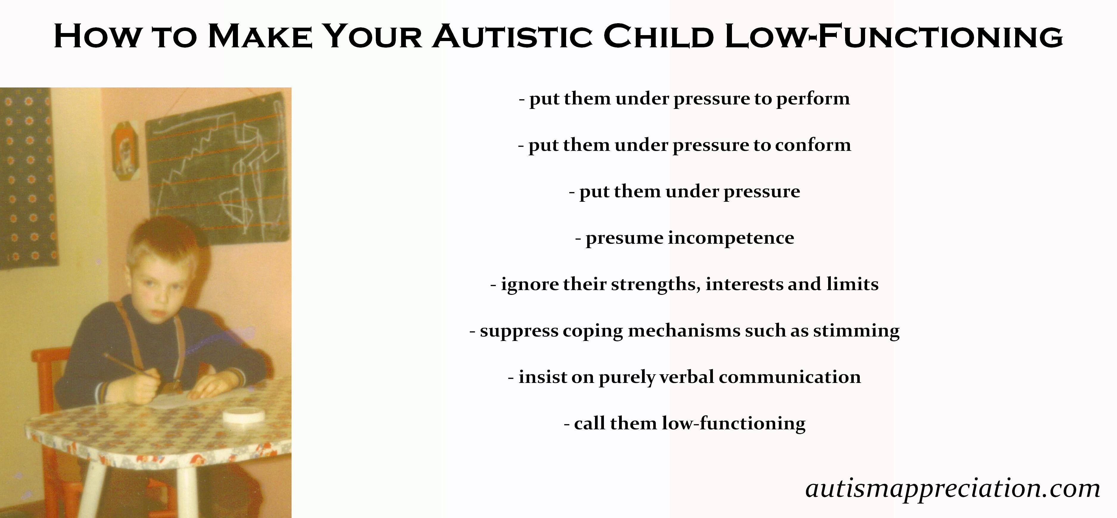 Why High Functioning Autism Is So >> What Is Low Functioning Autism C Frank L Ludwig